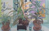 Fleur et plante